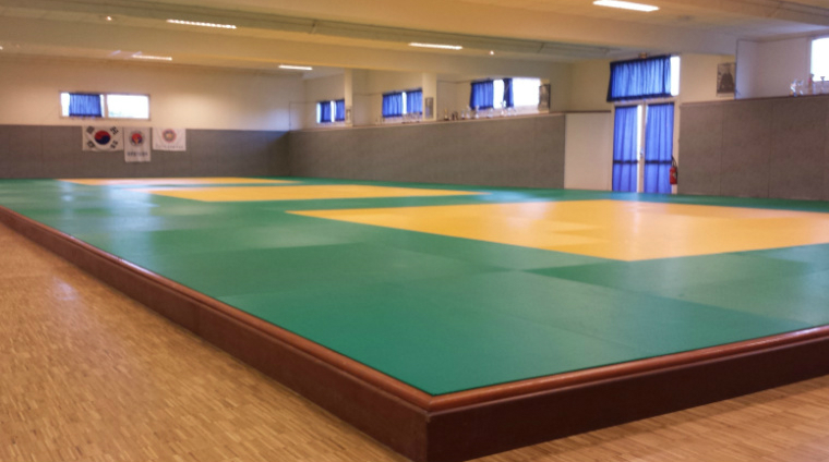 Arts Mrtiaux Janze, HapKiDo Federation Francaise de Taekwondo et Disciplines Associees